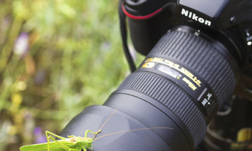 The Most Important Lens Accessory That You Probably Aren't Using