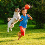 Little boy and his dog playing in their backyard