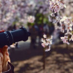 Photographer using macro lens to photograph flower