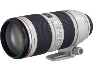 Canon-70-200mm Lens