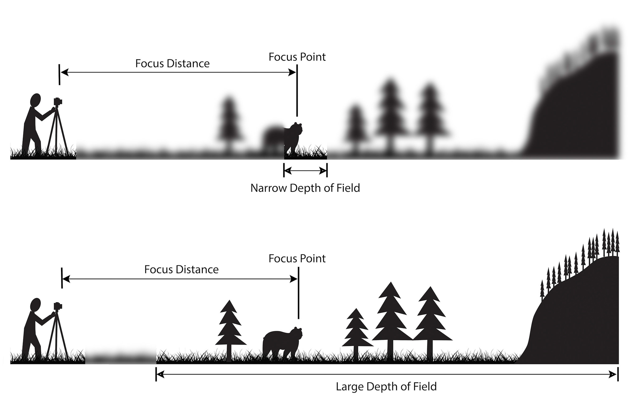 Depth of Field - Figure 1