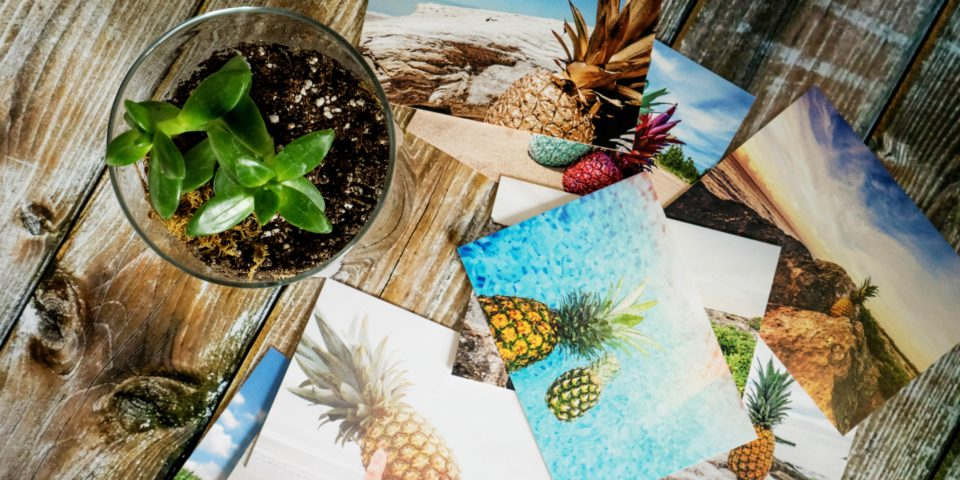 Getting Started with Photo Printing at Home