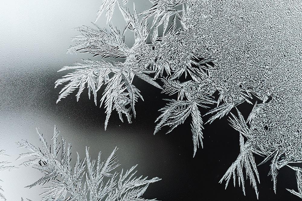 Macro shot of a snowflake on glass