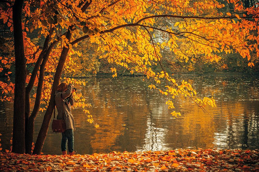 Fall-Photographer