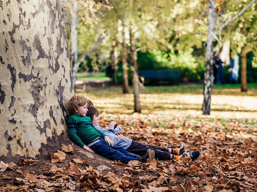 Kids sitting on leaves under a tree