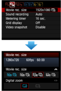 Video Basics: Video Menu Options (Canon Example)
